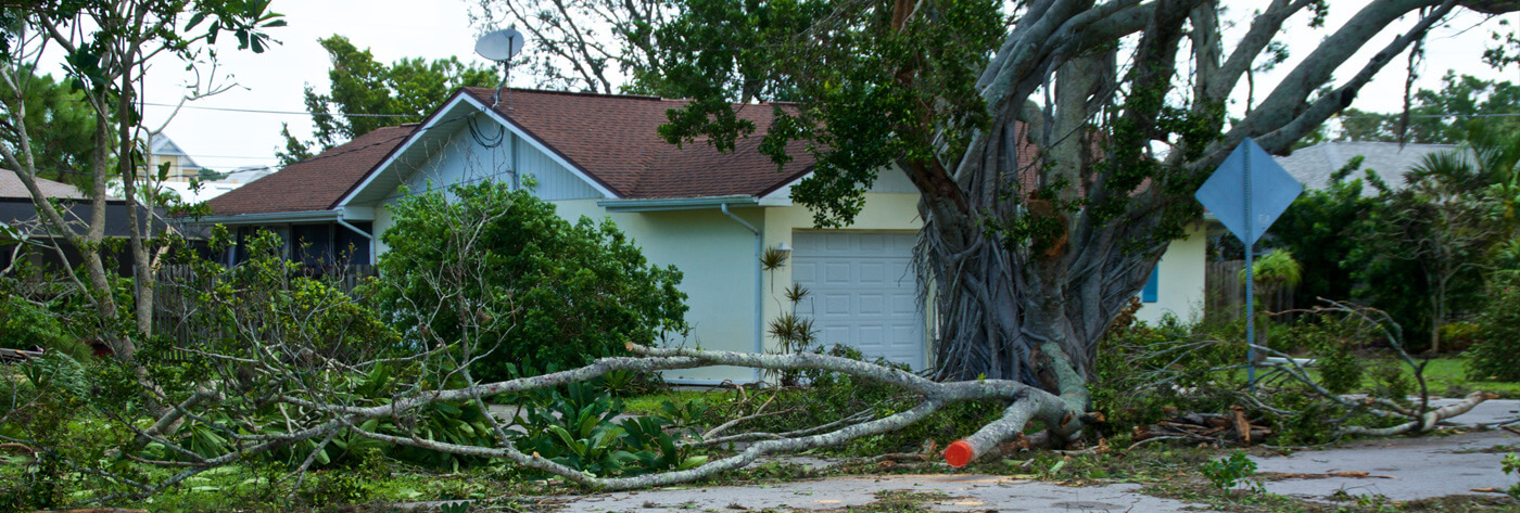 storm roof damage free assessment